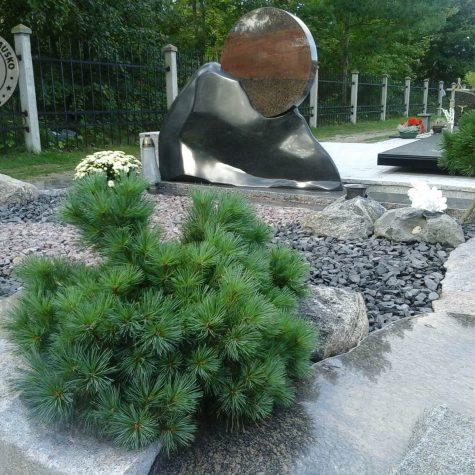 paminklas saulelydis 4566